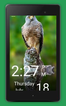 4 Schermata Daily Bird