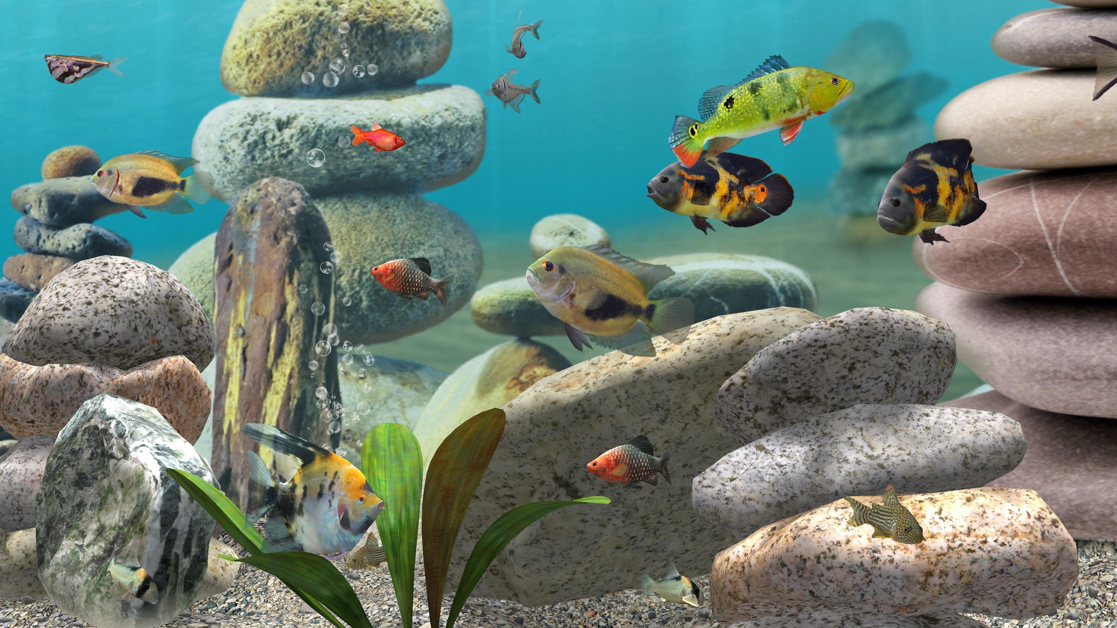 Fish Farm 3 Live Wallpaper: 3D Aquarium Background for Android - APK