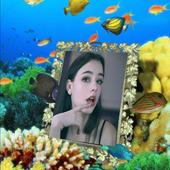 Box Photo Picture Frame Aquarium Collage Wall icon