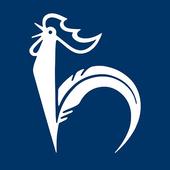 Hahn Gruppe icon
