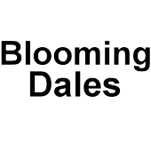 bloomingdales shopping app department store icon