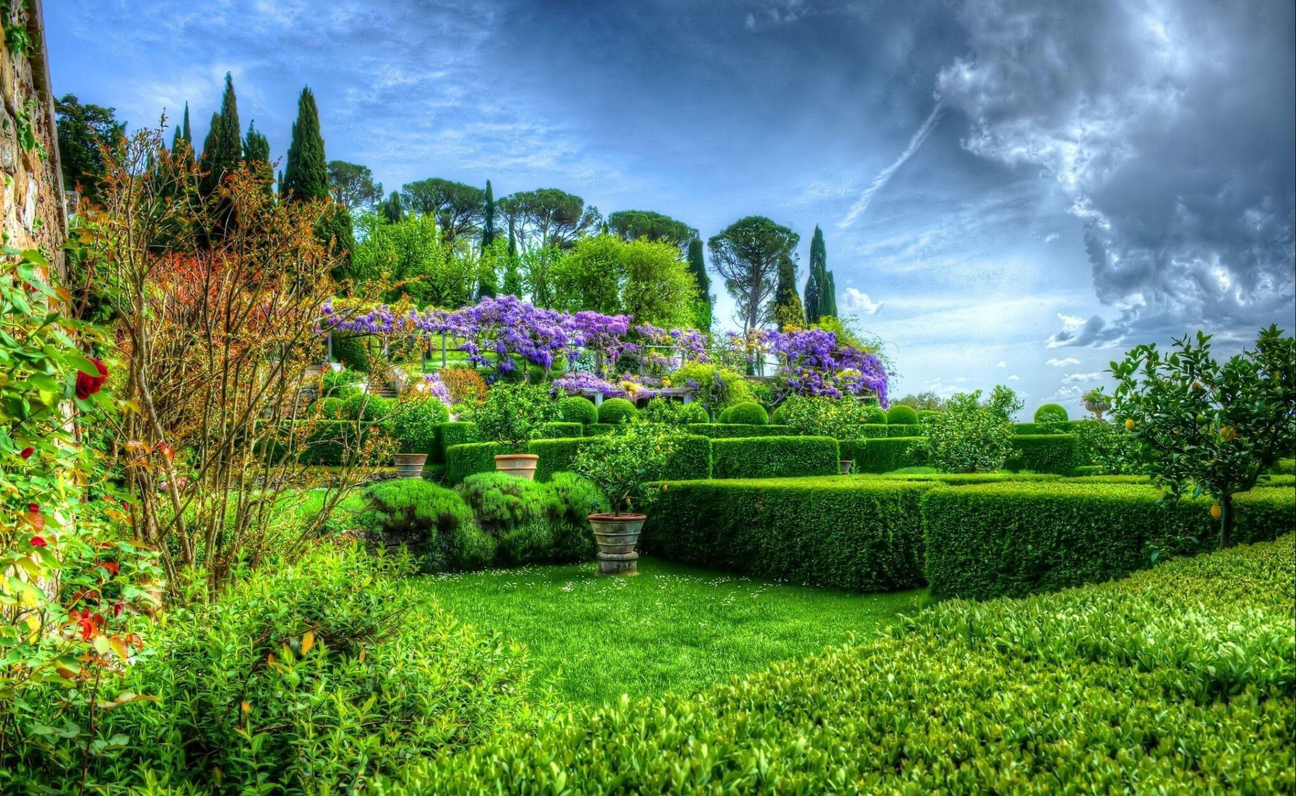 каждой сад в облаках картинки тля заселяет все