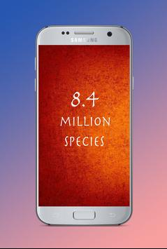 Story of 8.4 million species of life poster