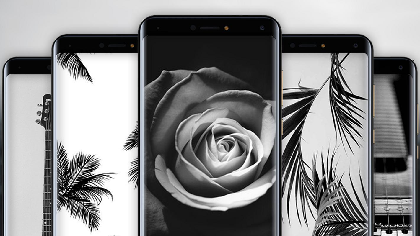 Black and white hd wallpaper poster
