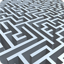 Labyrinth Brain Challenge APK
