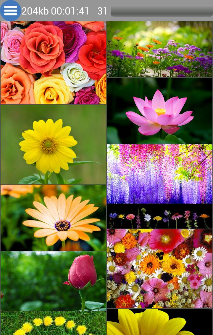 Photo Image Download All Files For Android Apk Download