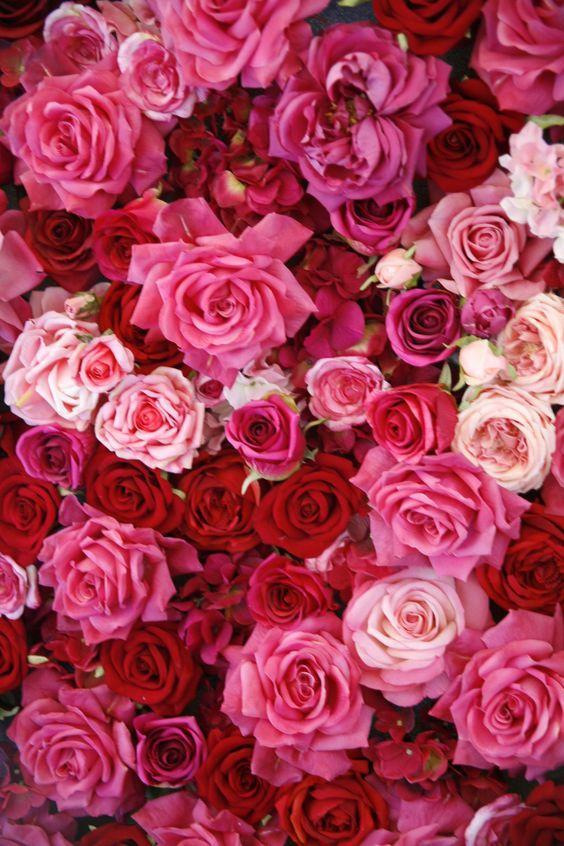 ارقى باقات الورود والزهور For Android Apk Download