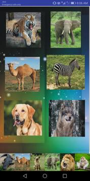 ANIMAL VOICE poster