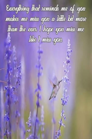 Miss me messages