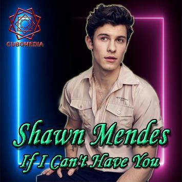 Lyrics of Shawn Mendes's full album song screenshot 2