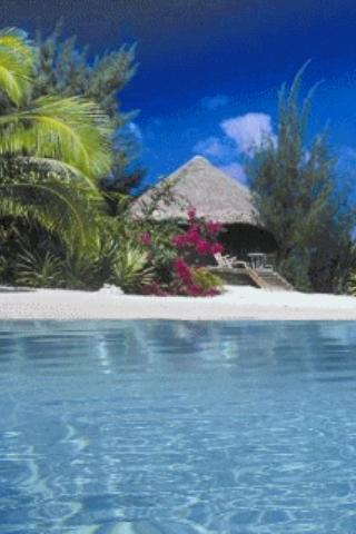 Caribbean Beach Live Wallpaper For Android Apk Download