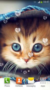 Cute Cats Live Wallpaper poster