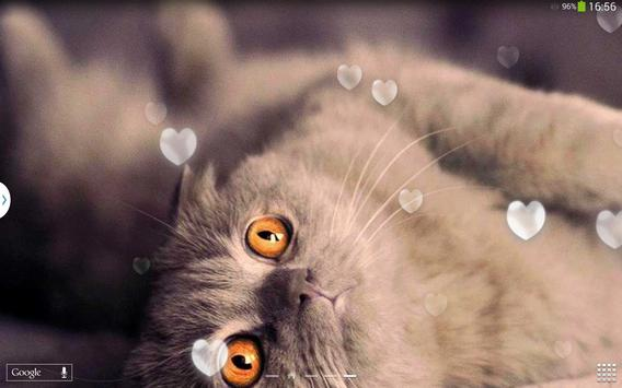 Cute Cats Live Wallpaper screenshot 10