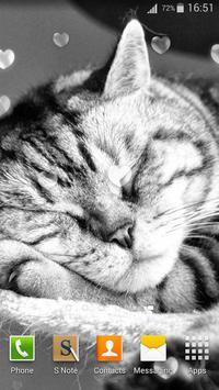 Cute Cats Live Wallpaper screenshot 12