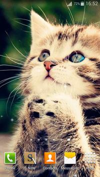 Cute Cats Live Wallpaper screenshot 14
