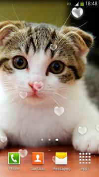 Cute Cats Live Wallpaper screenshot 4
