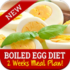 Best Boiled Egg Diet Plan icône