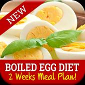 Best Boiled Egg Diet Plan icon