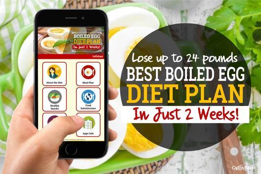 Best Boiled Egg Diet Plan poster