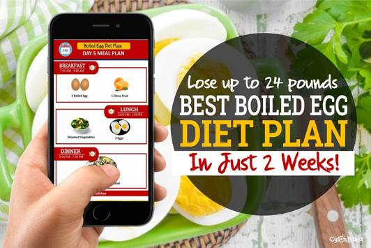 Best Boiled Egg Diet Plan screenshot 3