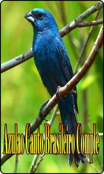 Azulao Canto Brasileiro Comple screenshot 3