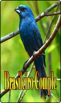 Azulao Canto Brasileiro Comple screenshot 2