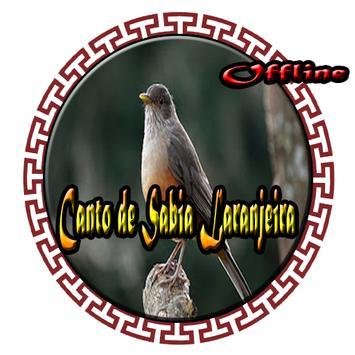Canto de Sabia Laranjeira poster