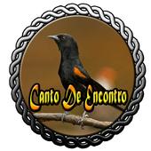 Canto De Encontro icon