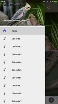 Cantos Do Calopsita Offline screenshot 5