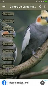 Cantos Do Calopsita Offline screenshot 6