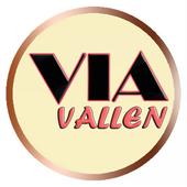 Via Vallen Full Album Mp3 icon