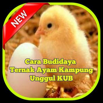 Cara Ternak Ayam Kampung poster