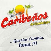 Caribeños de Guadalupe Mp3 icon