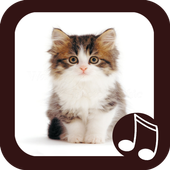 Cat Meow Real Sounds icon