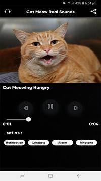 Cat Meow Real Sounds screenshot 1