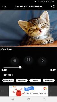 Cat Meow Real Sounds screenshot 5