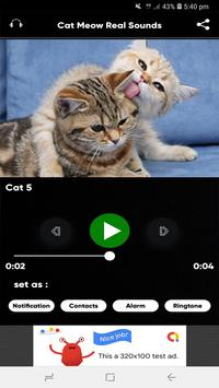 Cat Meow Real Sounds screenshot 6