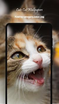 Cute Cat Wallpapers HD screenshot 3