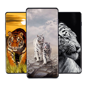 Tigers Wallpapers Tigers Images Hd 4k For Android Apk Download