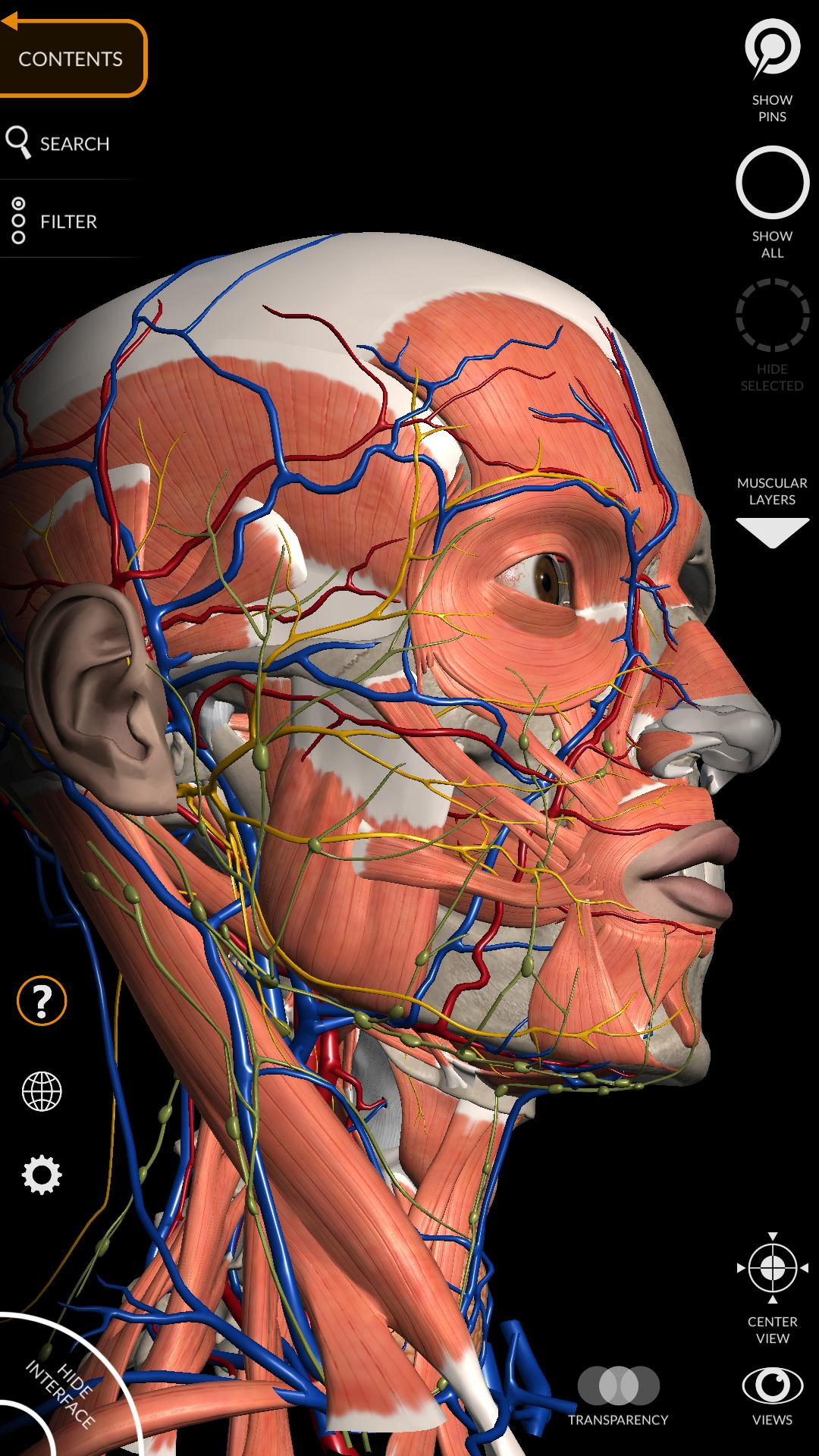 Anatomy 3D Atlas for Android - APK Download
