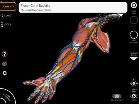 Anatomy 3D Atlas screenshot 9