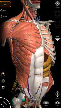 解剖学 - 三维图谱 海报