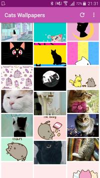 Cute Cats Wallpapers and Lockscreens poster
