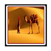 Travel Jaipur🌇- World Heritage city🌍 (UNESCO) icône