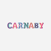 Carnaby Community icon