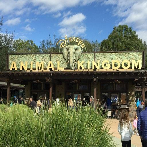 Disney Animal Kingdom Park Map 2019 for Android - APK Download