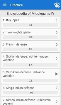 Chess Middlegame IV 海報