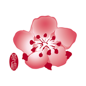 China Airlines App icon
