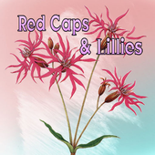 Red Caps And Lillies icon