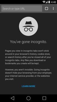 Chrome Beta screenshot 5